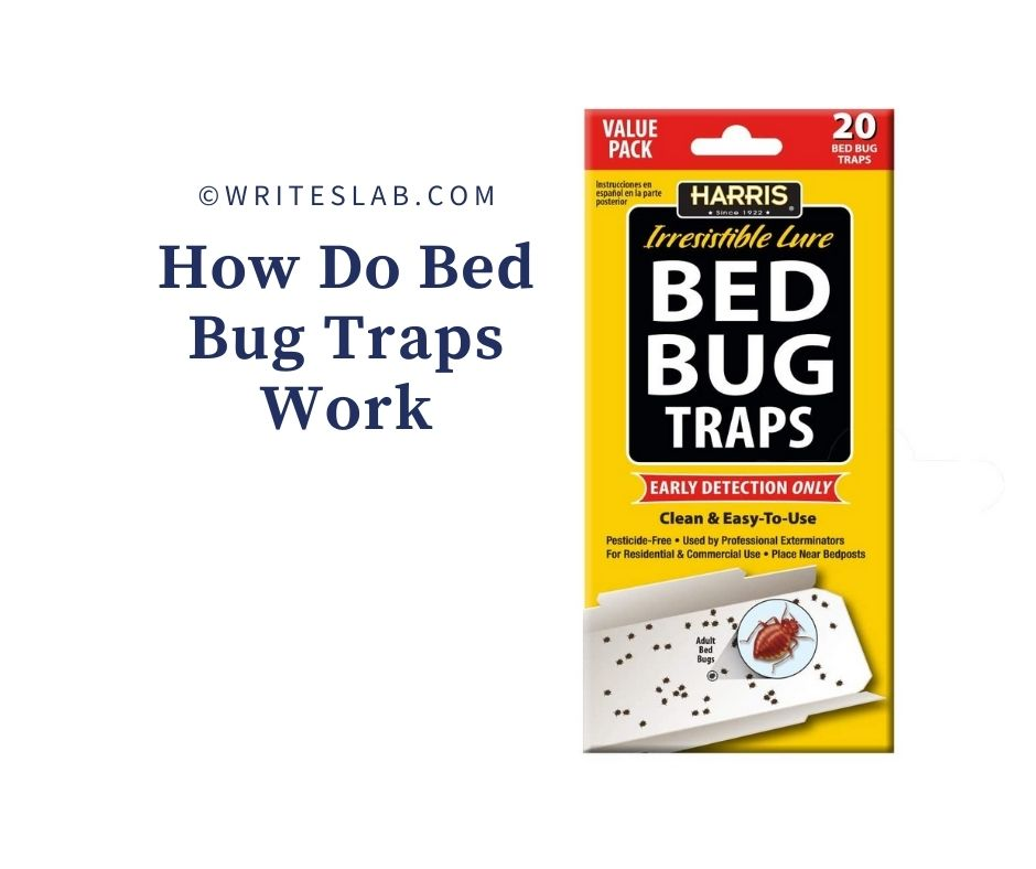How Do Bed Bug Traps Work