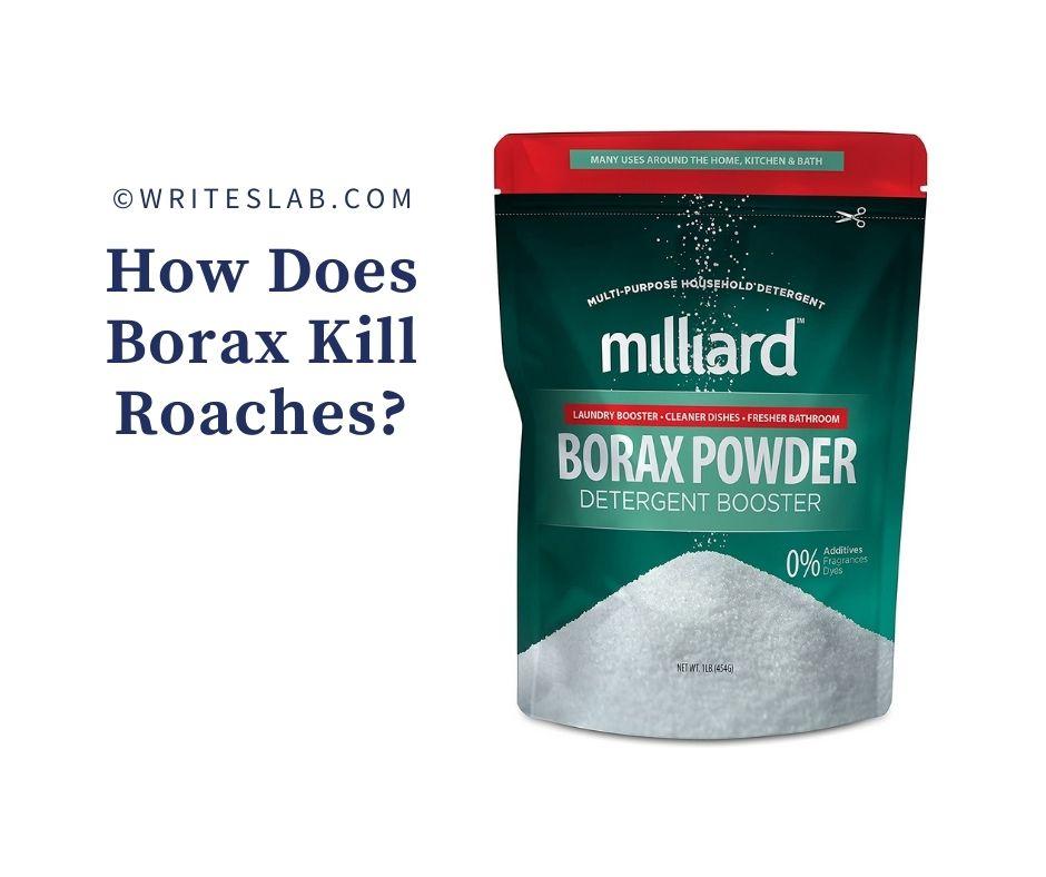 How Does Borax Kill Roaches?