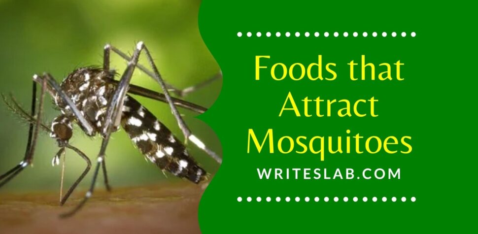 Foods that Attract Mosquitoes