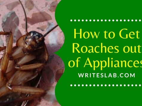 How to Get Roaches out of Appliances