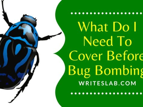 What Do I Need To Cover Before Bug Bombing