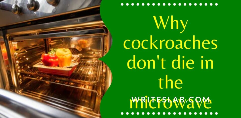 Why cockroaches don't die in microwave