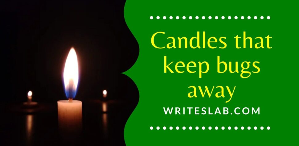 Candles that keep bugs away