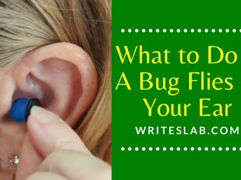 What to Do if A Bug Flies in Your Ear