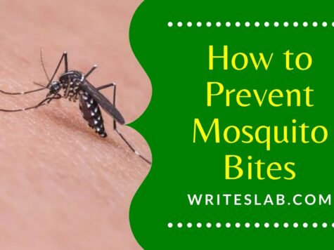 How to Prevent Mosquito Bites While Sleeping at Home