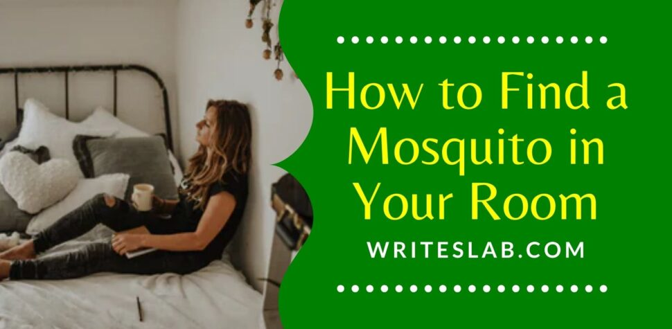 How to Find a Mosquito in Your Room