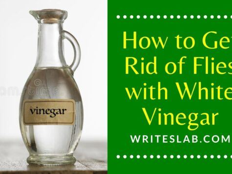 How to Get Rid of Flies with White Vinegar