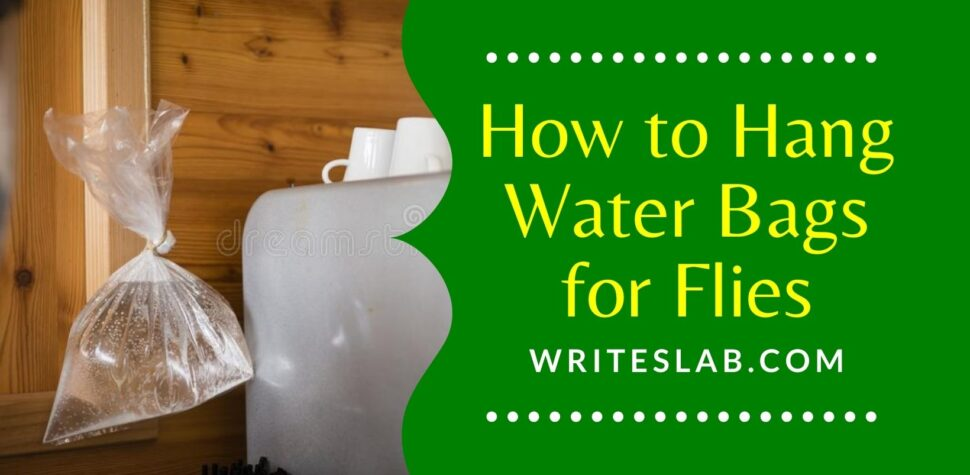 How to Hang Water Bags for Flies